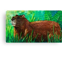 Groundhog Canvas Print