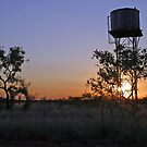 Wolfe Creek Water Tower by ontoor