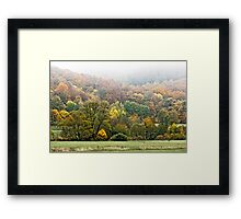 Autumnal colored woods  Framed Print