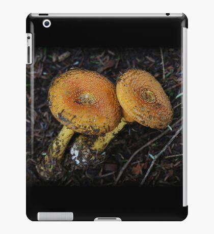 Trail Tag iPad Case/Skin