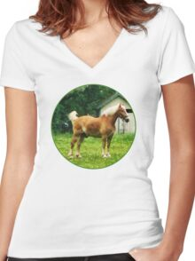 Palomino in Pasture Women's Fitted V-Neck T-Shirt