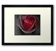 "Fine art. Nature. Rose ""Red PASSION 2"". Oil painting. Framed Print"