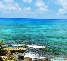 The Waters of Cozumel by Roland Pozo