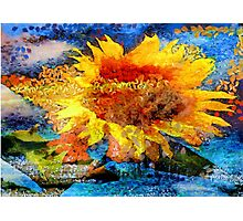 Textured orange  Sunflower Photographic Print