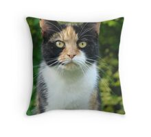 Charlie close Throw Pillow