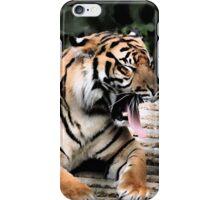 Tiggers Don't Like Honey.... iPhone Case/Skin
