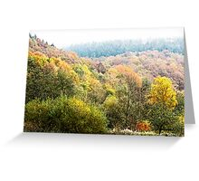 Autumnal colored woods Greeting Card
