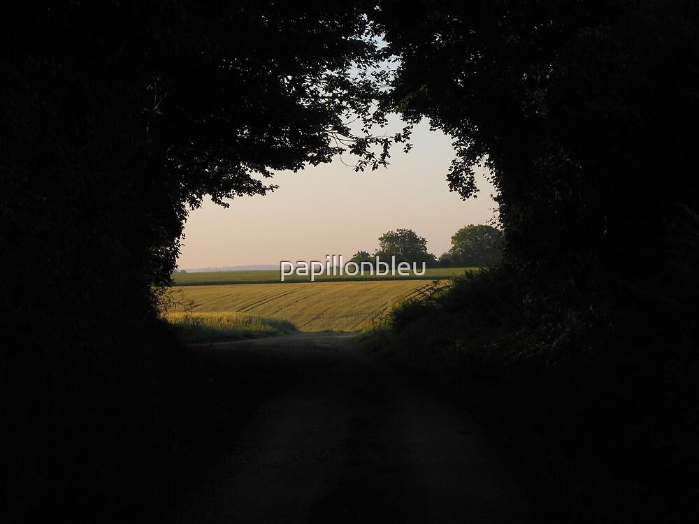 Meet the Morning Sun by Pamela Jayne Smith