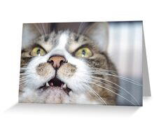 I'm hungry! Greeting Card