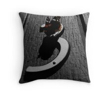 """Red Admiral Butterfly - """"Door Number Three"""" Throw Pillow"""