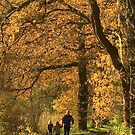 Autumn walk with dad by steppeland