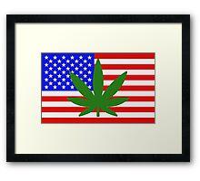 USA flag with a hemp leaf Framed Print