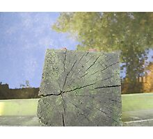 reflection 2 - polstead Photographic Print