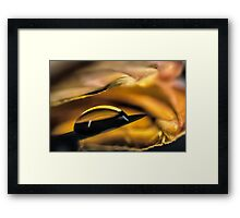 Infused with Fires Framed Print