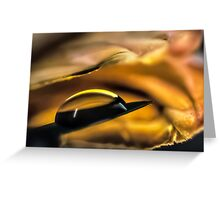 Infused with Fires Greeting Card