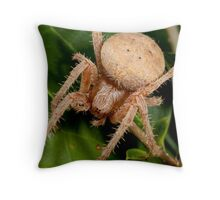 Brown Spider Throw Pillow