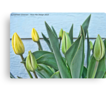 Yellow Buds Canvas Print