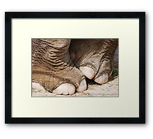 Tip Toe Through the Tulips with Me!           Framed Print