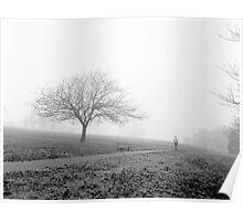 Fog at Ruffey Lake Park Poster