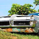The Pontiac by robert murray