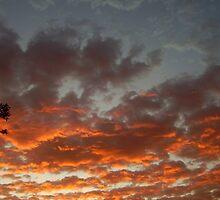 September Sunrise by Cal  Crilly