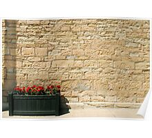 The Geraniums and the Wall Poster