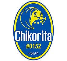 Sticker! Johto Produce (EN) Photographic Print