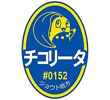 Sticker! Johto Produce (JP) Photographic Print
