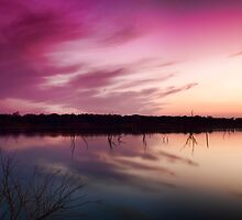 Texas Sunset by Wil Bloodworth