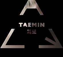 Taemin - Danger by kpoplace