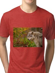 Timber Wolf Tri-blend T-Shirt