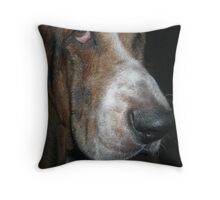This Is Buddy Throw Pillow