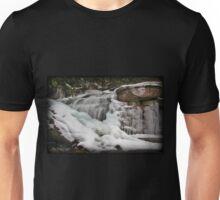 Frigid Falls Unisex T-Shirt