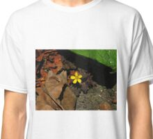 Procumbent Yellow Sorrel Classic T-Shirt
