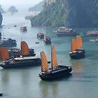 Junk Boats - Halong Bay, Vietnam by BreeDanielle