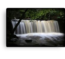 Oneida Rush Canvas Print