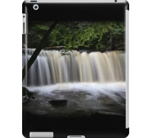Oneida Rush iPad Case/Skin