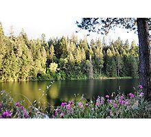 Rollins Lake  Photographic Print