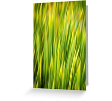 Green Nature Abstract Greeting Card