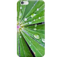 Lupin Leaf iPhone Case/Skin