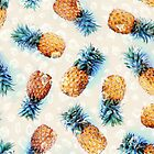 Pineapples + Crystals by micklyn