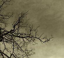 Aloneness by Larry  Stewart