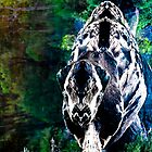 Dinosaur Dreaming by AnnabelHC