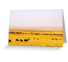 Dine' Cows Greeting Card