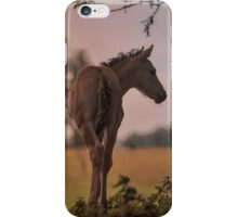Into the Great Wide Open iPhone Case/Skin