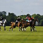 ROYAL POLO by scarlet james
