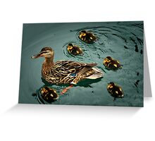 Duckling Flotilla Greeting Card