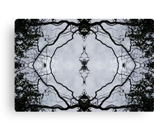 Curly Willow Canvas Print