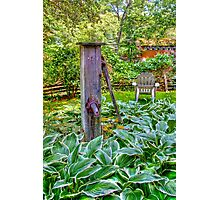 Old Wooden Pump Photographic Print