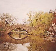 Beautiful Springtime Landscape - Central Park - New York City by Vivienne Gucwa